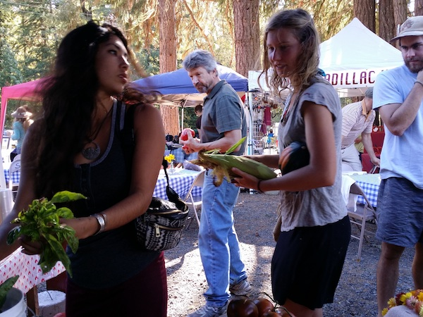 Shoppers at the 2015 Harvest Fair